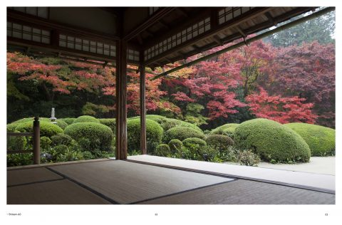 Japanese_Garden (13)