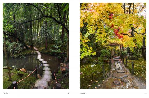 Japanese_Garden (6)