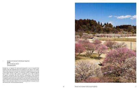 Japanese_Garden (7)