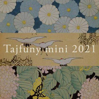 tajfunymini2021